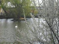 Ako dobre poznáte mestský park v Lučenci?