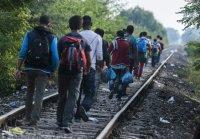 Čo viete o utečencoch a migrantoch? Poznáte fakty o novom európskom fenoméne?