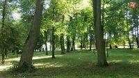 Otestuje sa v kvíze o parkoch v Spišskej a okolí aj vy: Čo o nich vlastne viete?
