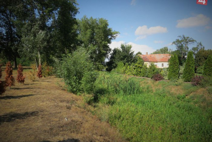Ilustračný obrázok ku kvízu Poznáte erby obcí z Michalovského okresu?