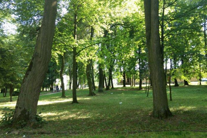 Ilustračný obrázok ku kvízu Otestuje sa v kvíze o parkoch v Spišskej a okolí aj vy: Čo o nich vlastne viete?