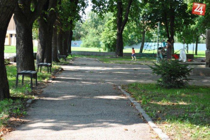 Ilustračný obrázok ku kvízu Otestuje sa v kvíze o michalovských parkoch aj vy: Čo o nich vlastne viete?