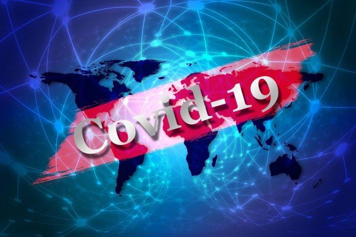 Výsledok vyhľadávania obrázkov pre dopyt koronavirus slovensko