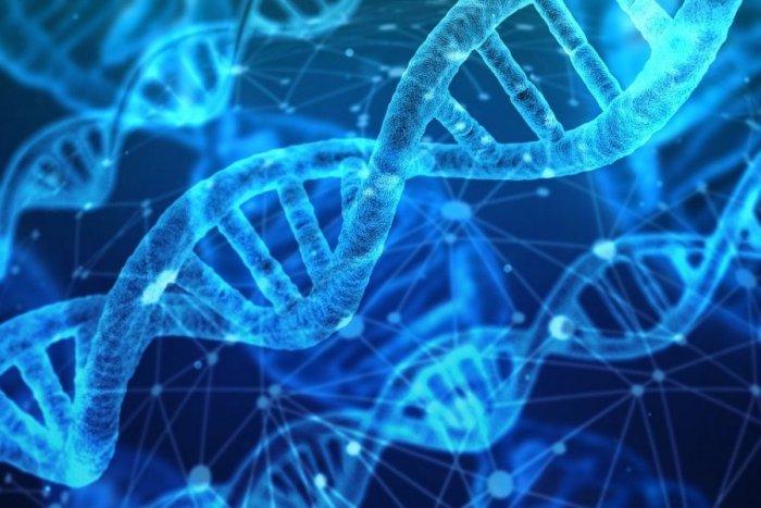 Ilustračný obrázok k článku Unikátny ročník o najlepšieho učiteľa Slovenska: Finalistom odobrali DNA, čo zistili?